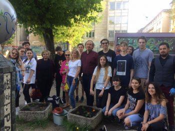 Цветя и кипариси в двора на Първа английска гимназия София